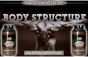 Anabolic Amino 10000 DNI, Tăng cơ giảm mỡ,
