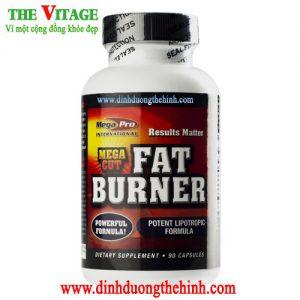 Mega Cut Fat Buner Mega Pro, thực phẩm giảm cân nhanh