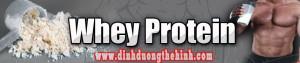 Whey Protein là gì ? 100% Whey Protein là gì ?