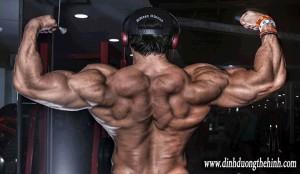 Kế hoạch cắt nét cơ bắp