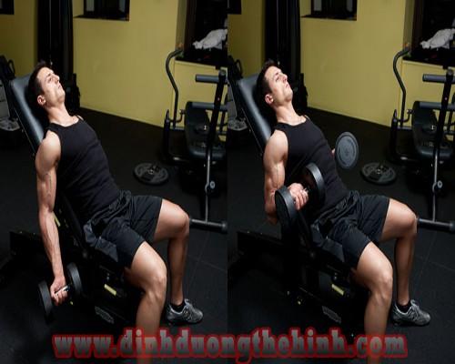 Các bài tập cơ tay trước giúp tăng cơ bắp tốt nhất