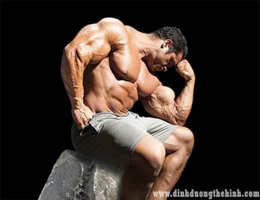 tập thể hình đúng cách cơ tăng hiệu quả