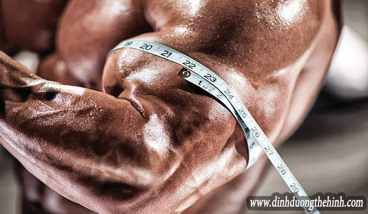 8 mẹo tăng cơ bắp và xây dựng cơ bắp