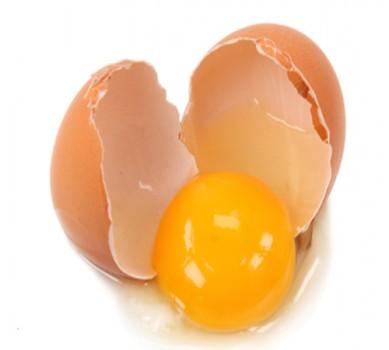 Trứng gà chứa hàm lượng protein cao