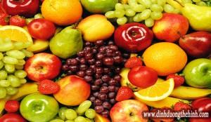 Top Vitamin cần thiết
