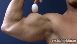 Trứng thực phẩm quan trọng cho người tập thể hình