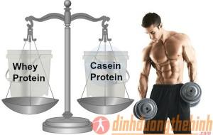 whey-protein-va-casein-protein