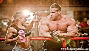 Người tập thể hình nên dùng whey protein không