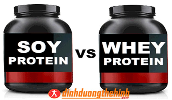 Whey protein và soy protein
