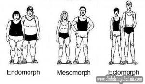 Toàn tập dinh dưỡng và tập luyện cho dạng người Ectomorph