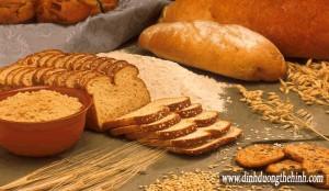 Carbohydrate một cái nhìn tổng quan