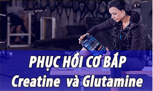 Creatine & Glutamine