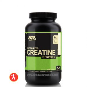 ON Creatine Powder 300g